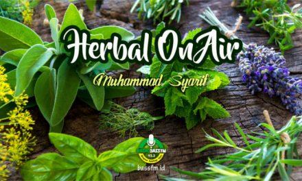 Tanaman Obat Untuk Darah Tinggi (Muhammad Syarif)